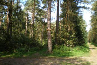 Hesel-Uplengen-Route 63 Km