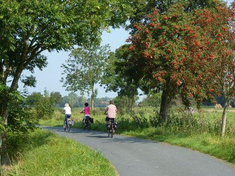 Radfahrer auf einer Landstraße