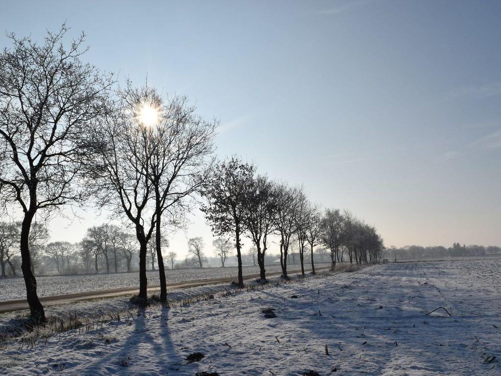 Winter-Tagesprogramm